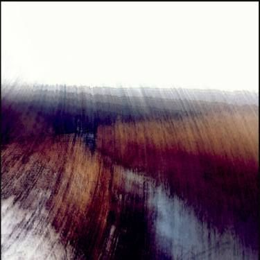"Saatchi Art Artist Dagmar Lukes; Photography, ""In the reeds"" #art"