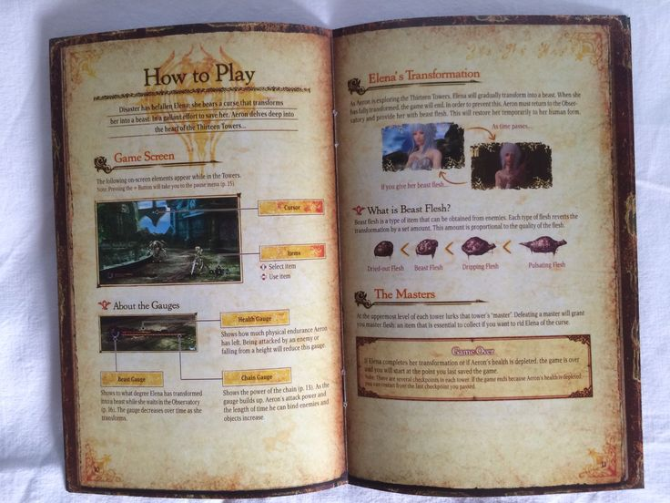 Pandora's Tower instruction booklet opened.