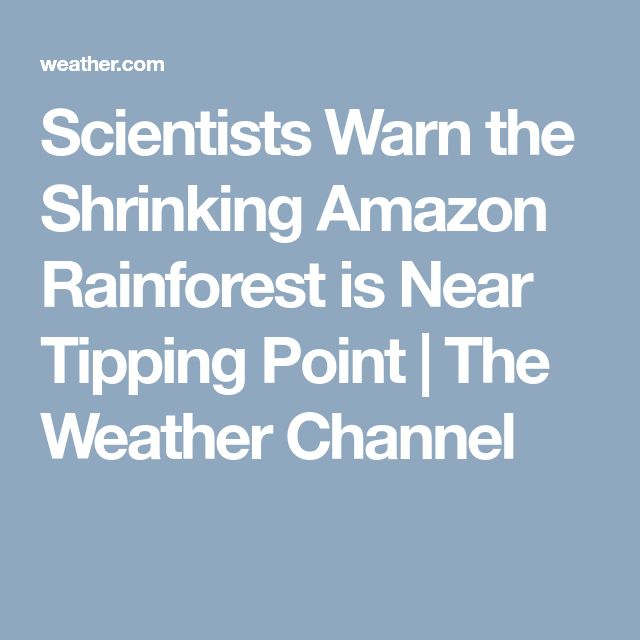 Scientists Warn the Shrinking Amazon Rainforest is Near Tipping Point | The Weather Channel