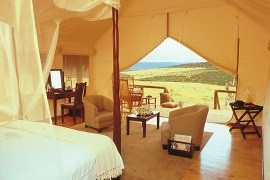 Gorah Elephant Camp in Eastern Cape, South Africa
