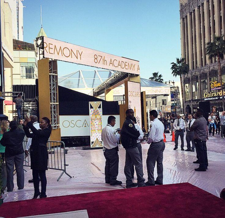SKIRTIT Tours the Oscars 2015