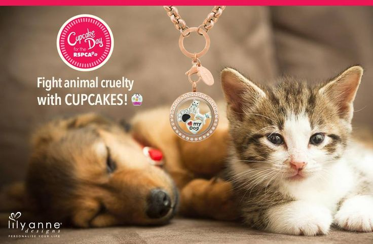 {RSPCA Cupcake Day}   Fight animal cruelty with CUPCAKES  Support your family and friends who are supporting this wonderful cause for the RSPCA    #LilyAnneDesigns #PersonalisedLockets #RSPCA #CupcakeDay
