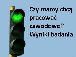 Wyniki badania - czy mamy chcą pracować zawodowo - przeprowadzonego przez portal mamopracuj.pl w maju 2012 r.  http://www.mamopracuj.pl/czy-mamy-chca-pracowac-zawodowo-wyniki-badania
