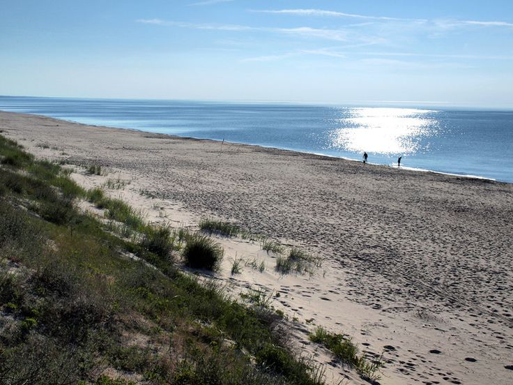 Pomiędzy Kątami Rybackimi a Krynicą Morską, leży mała osada Przebrno, ulokowana od strony Zalewu Wiślanego
