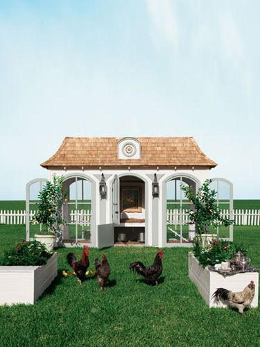 "Modeled after Marie Antoinette's Versailles retreat, Le Petit Trianon, this multilevel chicken suite includes a nesting area, a chandelier, a ""living room,"" and a library to house your chicken and gardening books."