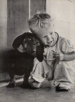 Antique photo - Dachshund and child
