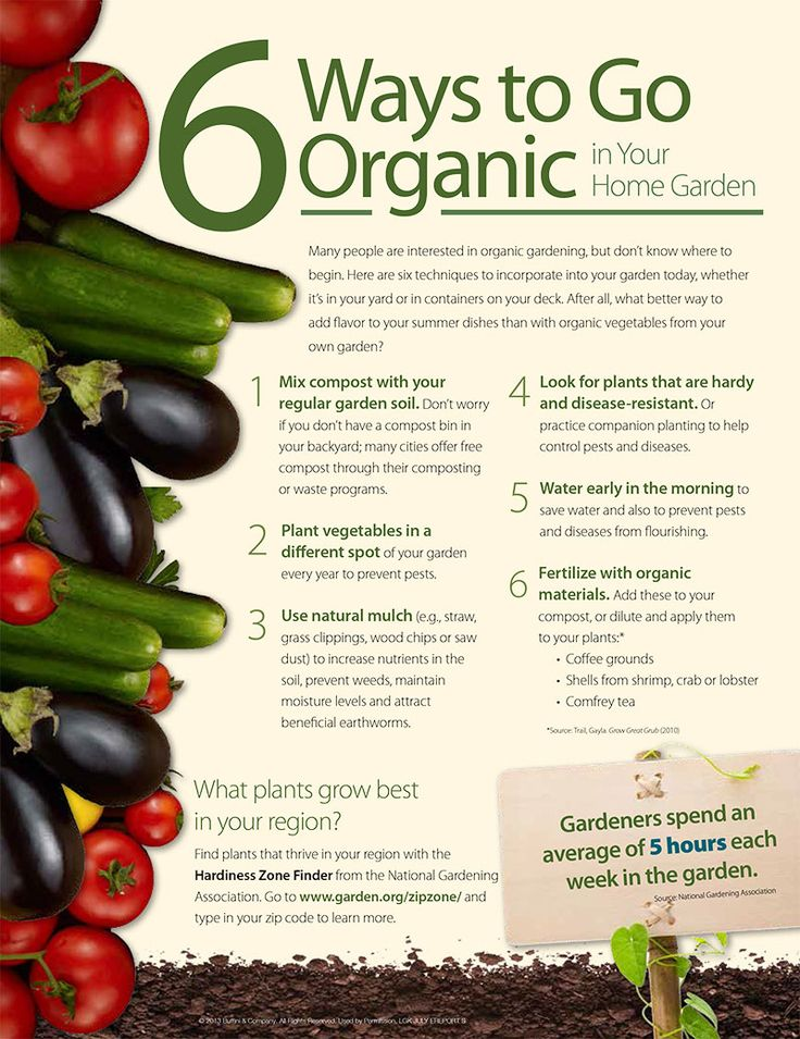 Organic gardening gardening steps for Gardening tips