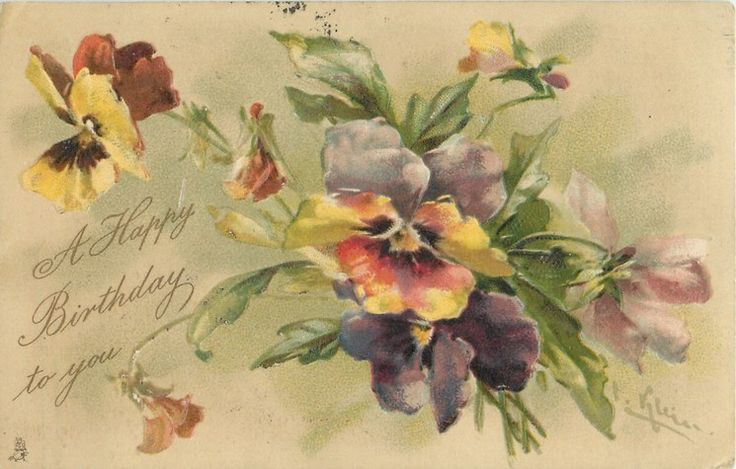 A HAPPY BIRTHDAY TO YOU  multicoloured pansies