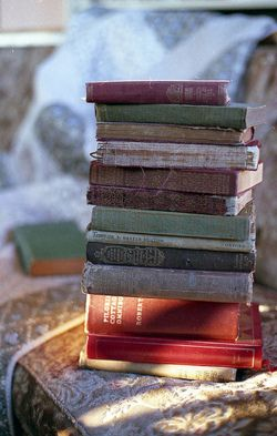 """""""Books work from the inside out. They are a private conversation happening somewhere in the soul.""""    - Jeanette Winterson"""