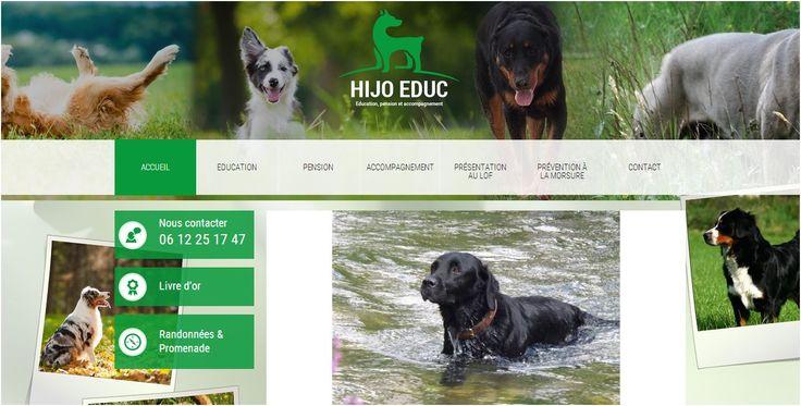 Site éducateur canin.