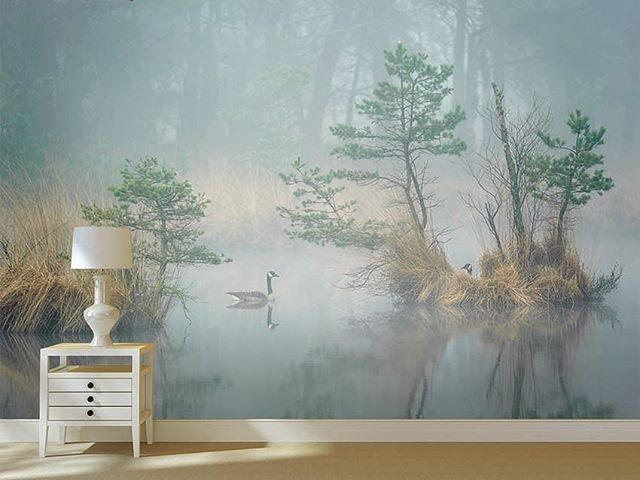 Good morning beauties❕#wallpera #ifwallscouldtalk #wallpaper #wallcovering #duvarkagidi #duvarkağıdı #divarkagizi #mural #poster #tapete #tapeti #tapeta #fondecran #tapetsaria #sfondo #kertasdinding #papeldeparede #oboi #papelpintado #tapet #homedecor #interiordesign #architecture #instadesign #homedesign #decoration #decoração #inspiration #goodmorning #morningbeauty