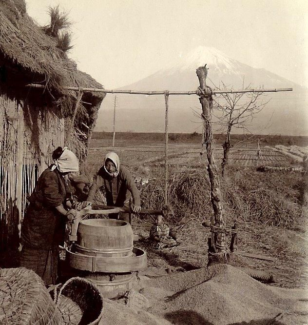 Farmers and Mount Fuji 富士山と農家