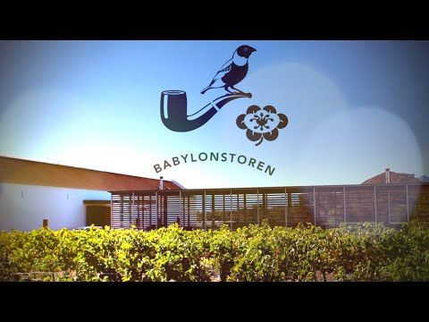 A New Home for the fine Wines of Babylonstoren.