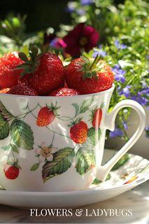 Strawberry (a healing fruit)