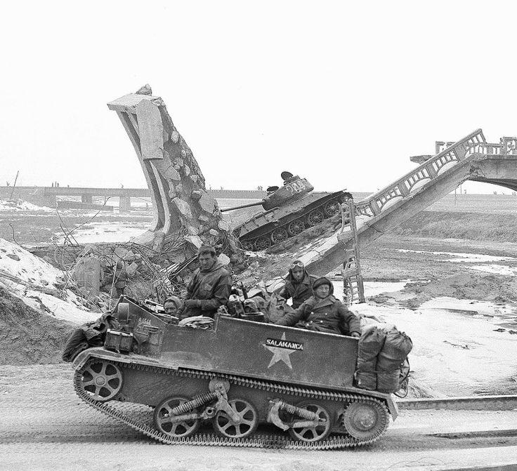 Korean War British Universal Carrier
