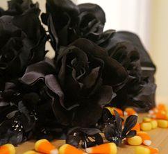 Halloween Black Rose Arrangement