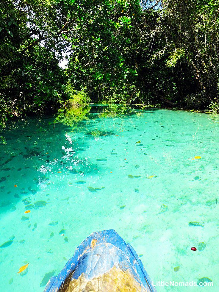 Floating down the Riri River. Espiritu Santo, Vanuatu.