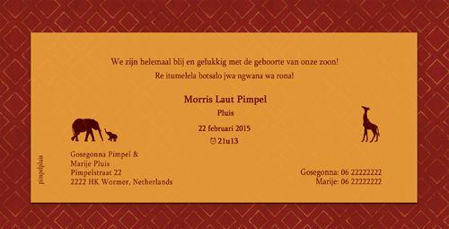 Geboortekaartje Morris - achterkant - Pimpelpluis - https://www.facebook.com/pages/Pimpelpluis/188675421305550?ref=hl (# layout - tekst - dieren - Afrika - olifant - giraf - silhouet - origineel)