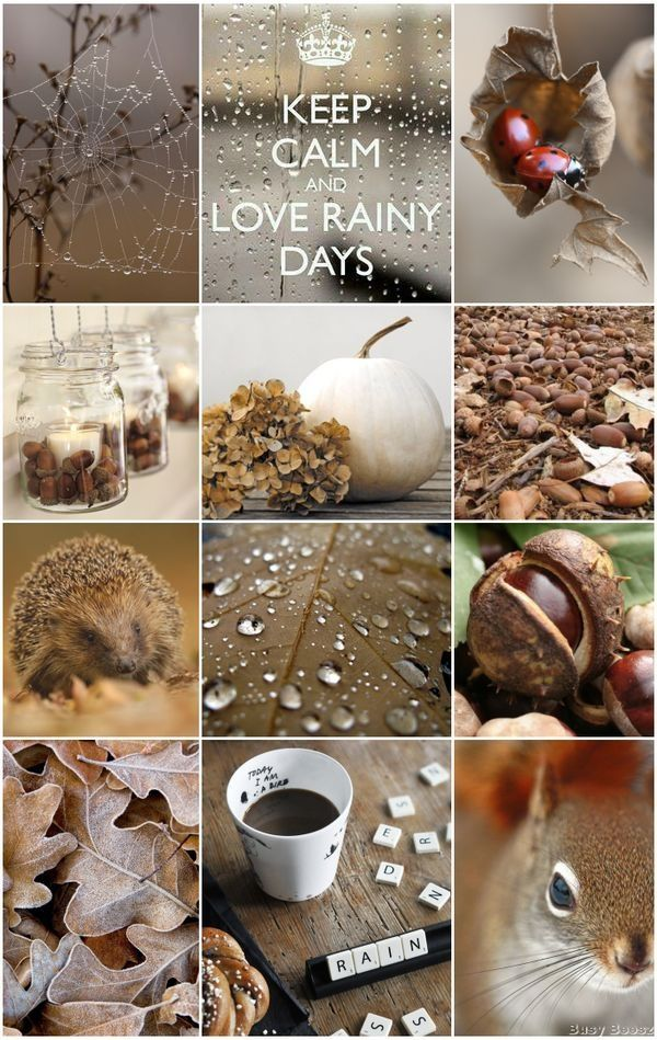 moodboard cozy, natural colors, earthy, warm fall
