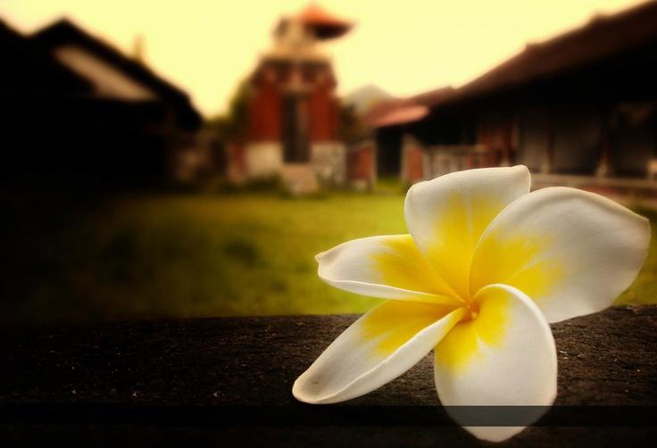Jepun Bali..