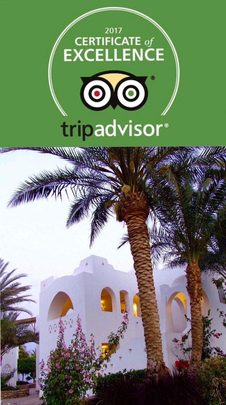 Domina Coral Bay Oasis is the winner of another important Trip Advisor Award 🎉🎉🎉
