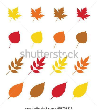 Set of four colorful autumn leaves in warm colours