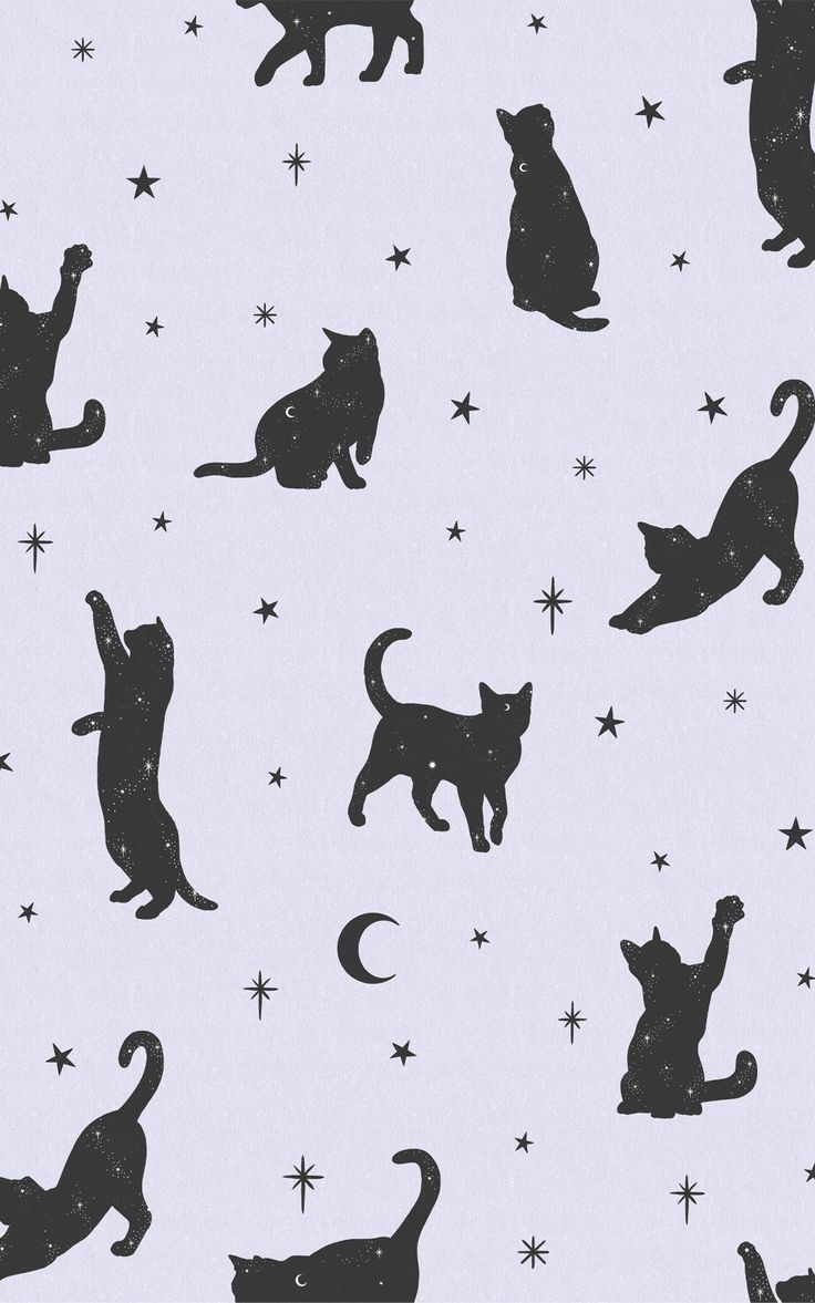 Want to conjure up a magical mood in your interiors? The pairing of lilac and black colours with the cat, moon and stars motif in our Salem wallpaper is a whimsical and on-trend way to update your space. Style with more starry sky decor in your bedroom for a mystical look that'll keep putting a smile on your face.This pattern is ideal for a teenager's bedroom, too, decorated with fairy lights and other pastel touches. Cat Pattern Wallpaper, Cat Wallpaper, Wallpaper Ideas, Witchy Wallpaper, Forest Wallpaper, Pastel Purple, Purple And Black, Lilac, Salem Cat