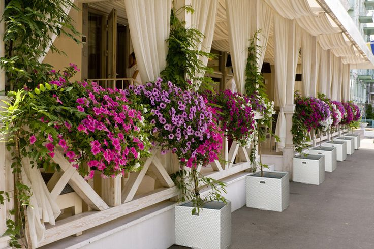 RobertoRossi.ro artificial rattan pots offer the best prices, potted plants and flowers for any interior and exterior.