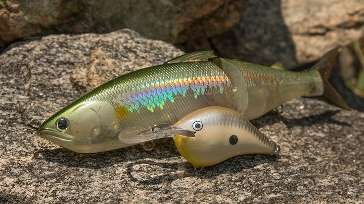 How to Restore Old Fishing Lures