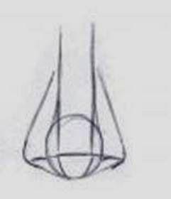 paso 3 para aprender a dibujar una nariz de frente