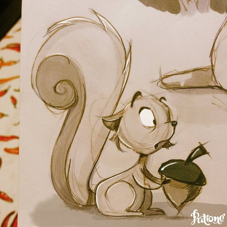 Squirrel! by patione  ★ || CHARACTER DESIGN REFERENCES (https://www.facebook.com/CharacterDesignReferences & https://www.pinterest.com/characterdesigh) • Love Character Design? Join the Character Design Challenge (link→ https://www.facebook.com/groups/CharacterDesignChallenge) Share your unique vision of a theme, promote your art in a community of over 25.000 artists! || ★