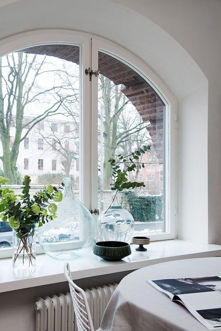 Plants by the window via @hegeinfrance