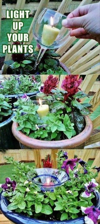 Light up your flowers! Great idea for BBQ parties!
