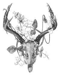 skull and flower drawings - Google Search