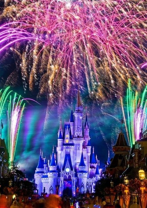 Gorgeous Picture of Cinderella Castle at Walt Disney World!!!