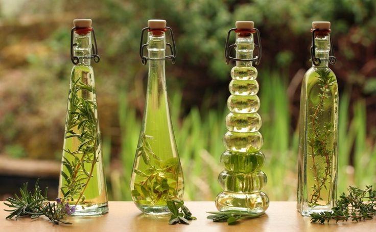 Zioła w oliwie