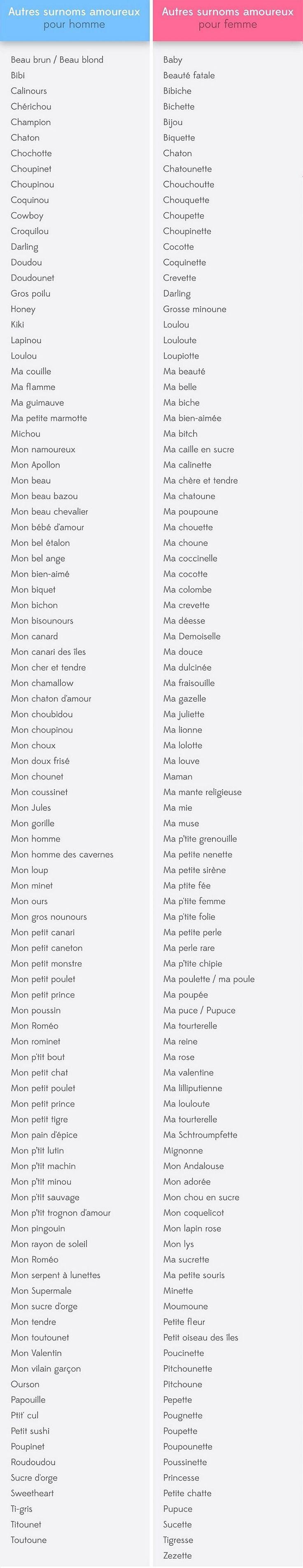 Source : http://www.demotivateur.fr/article-buzz/voici-les-200-surnoms-les-plus-utilises-pour-appeler-votre-amoureux-amoureuse-lequel-est-le-votre--3372