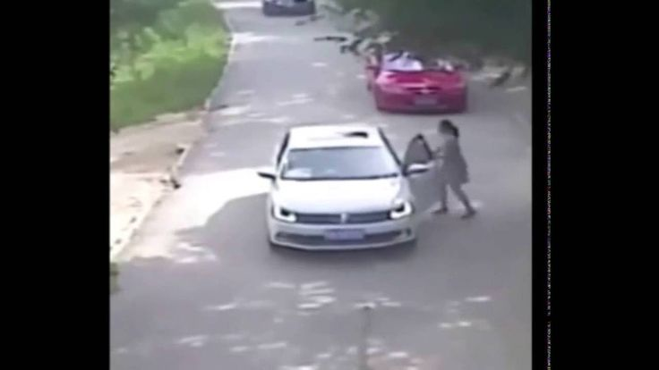 Тигр нападает на девушку в парке Китая