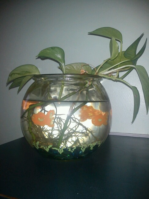 11 best painted glass images on pinterest fish pisces for Painted glass fish