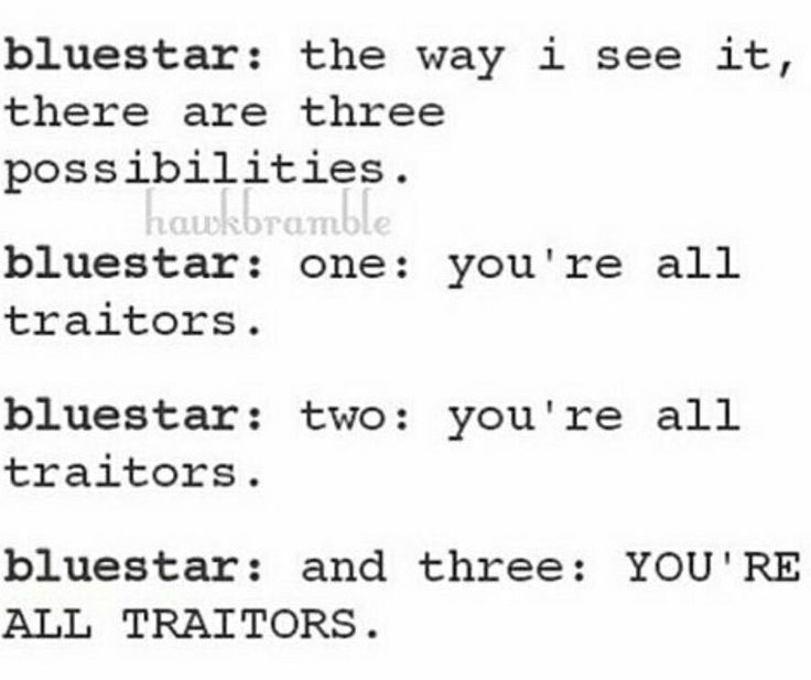 The most random conversations and text messages between the Warrior Cats…