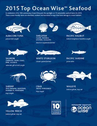 A chart illustrating the Ocean Wise program's 10 most sustainable fish to eat.