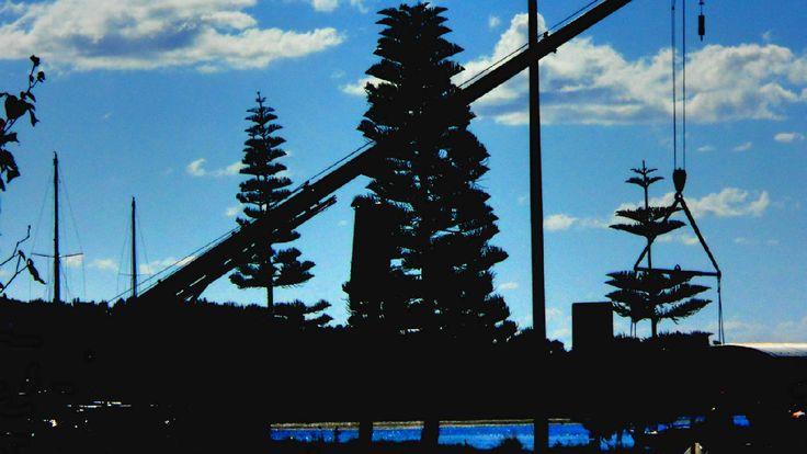 Extending Westport Marina 2016, Port Macquarie NSW