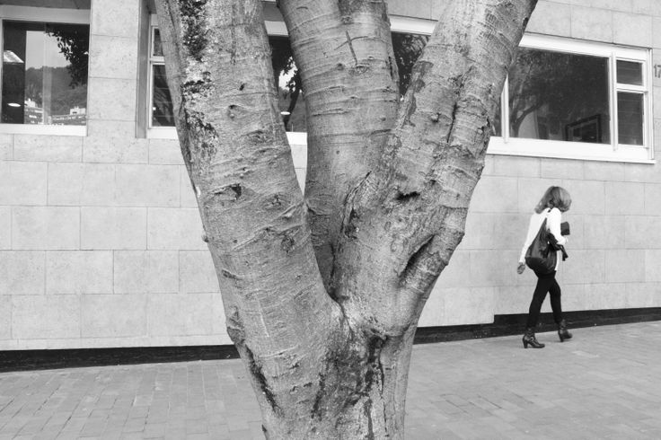 Sexualidad en la naturaleza (Abstracto)