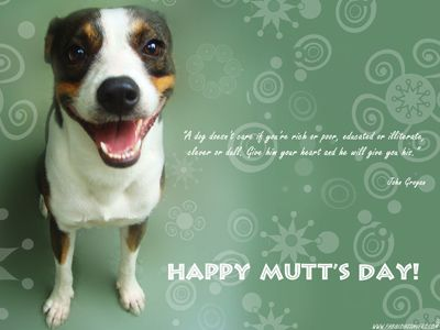 Download Free National Mutt Day desktop hd wallpapers backgrounds images. More holiday wallpapers at: http://www.freecomputerdesktopwallpaper.com/