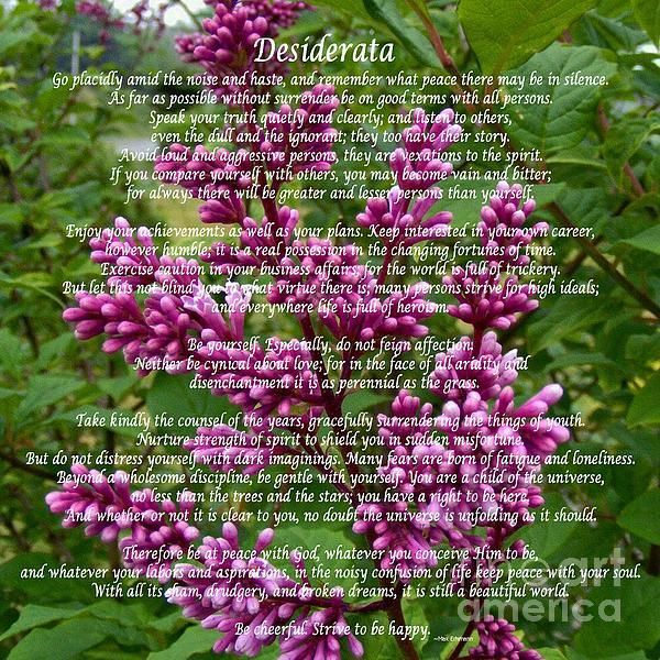 Desiderata with Lilac Buds and Texture by Barbara Griffin. This beautiful inspirational poem is a credo for life; simple, positive words about things that are yearned for. Five sections in the poem talk about other persons, career, love, life and God.
