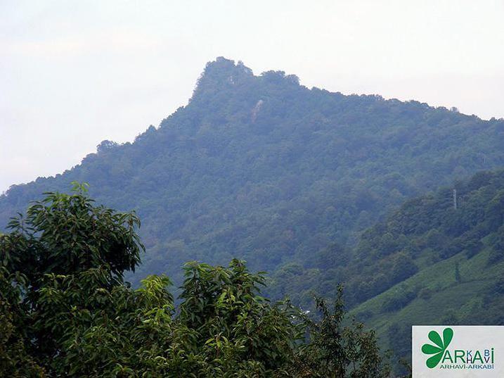 http://kankubadi.wix.com/arhavi-arkabi