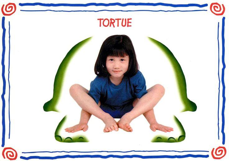 tortue modèle