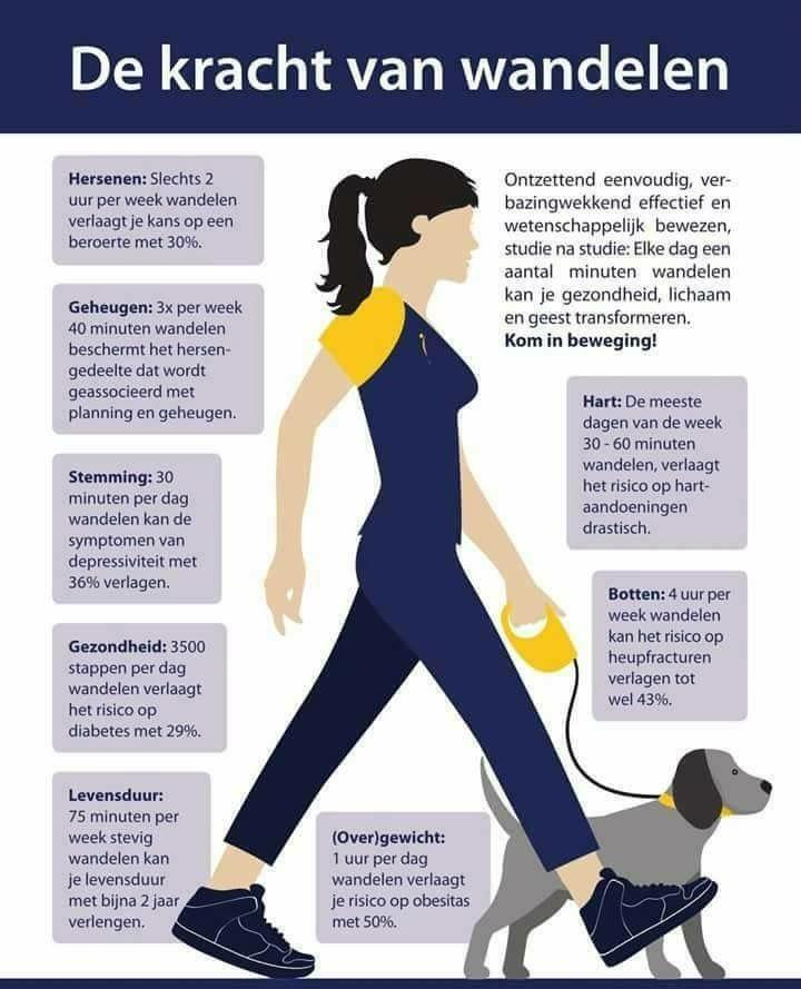 Daarom is wandelen goed voor een fitte en gezonde leefstijl!!