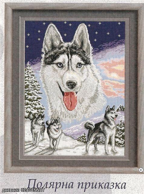 1000 images about borduren wolven on pinterest punto cruz wolves