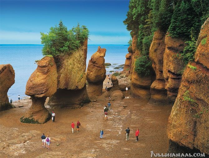 The Bay of Fundy (Canada) is renown for having the highest tides on the planet (16.2 metres or 53 feet).